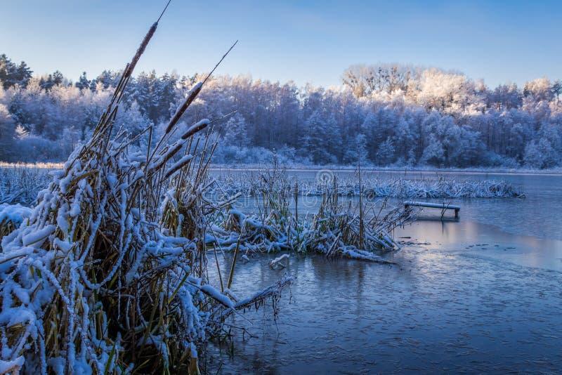 Salida del sol en el lago del invierno cubierto con la nieve, Polonia imagen de archivo libre de regalías