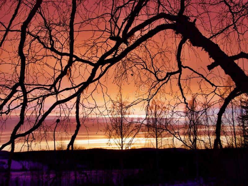 Salida del sol en el norte de Suecia foto de archivo libre de regalías