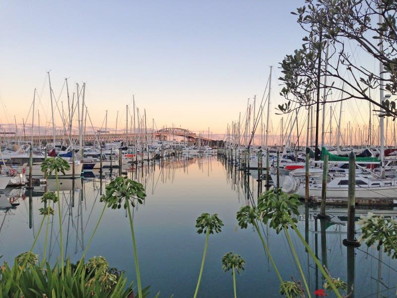 Salida del sol en el puerto deportivo de Westhaven, Auckland, Nueva Zelanda imagen de archivo libre de regalías