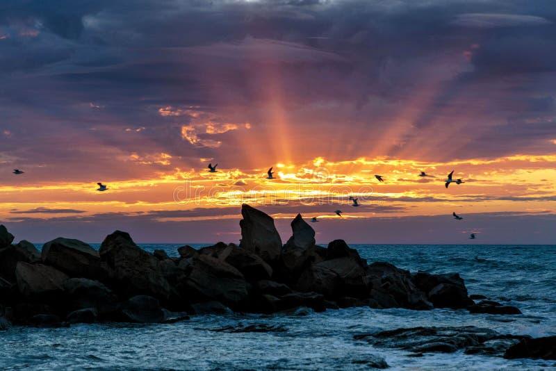 Salida del sol en la bahía de Opollo, gran camino del océano, Victoria, Australia fotos de archivo