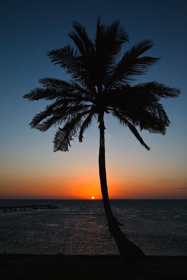 Salida del sol en la costa del Caribe de Belice fotos de archivo