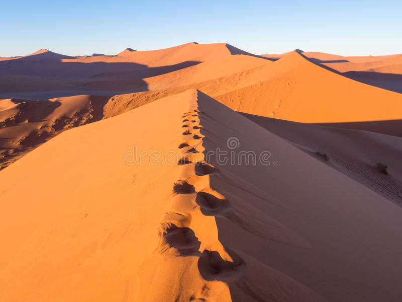 Salida del sol en la duna 45 en el desierto de Namib, Namibia imagen de archivo libre de regalías