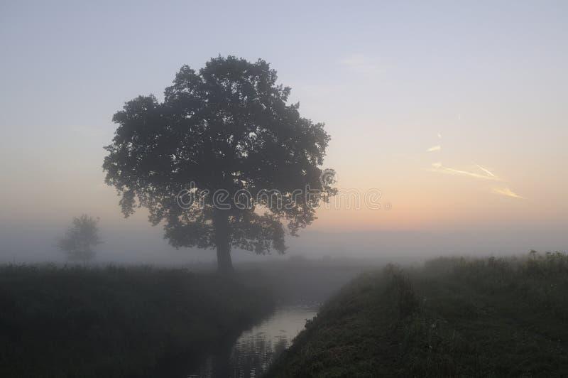 Salida del sol en la niebla foto de archivo libre de regalías