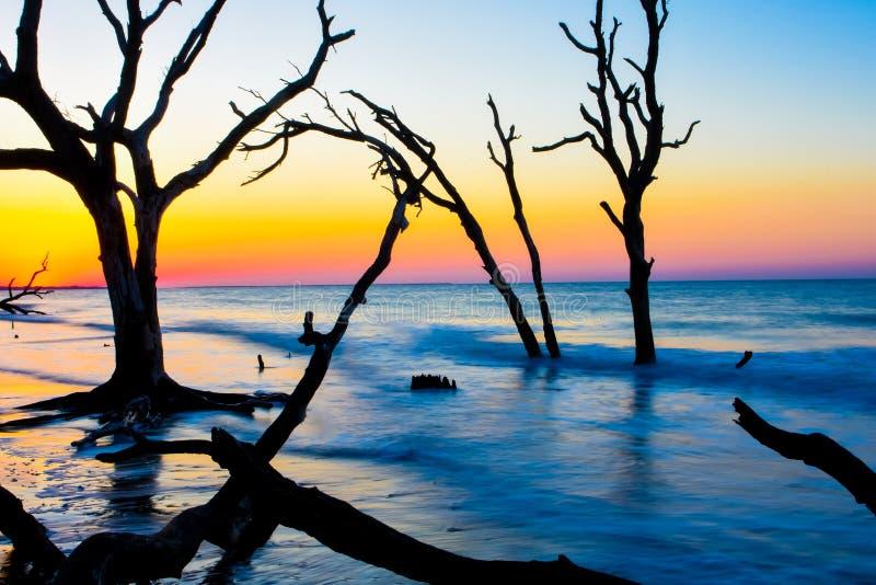 Salida del sol en la plantación de la bahía de la botánica, isla de Edisto, Carolina del Sur imágenes de archivo libres de regalías