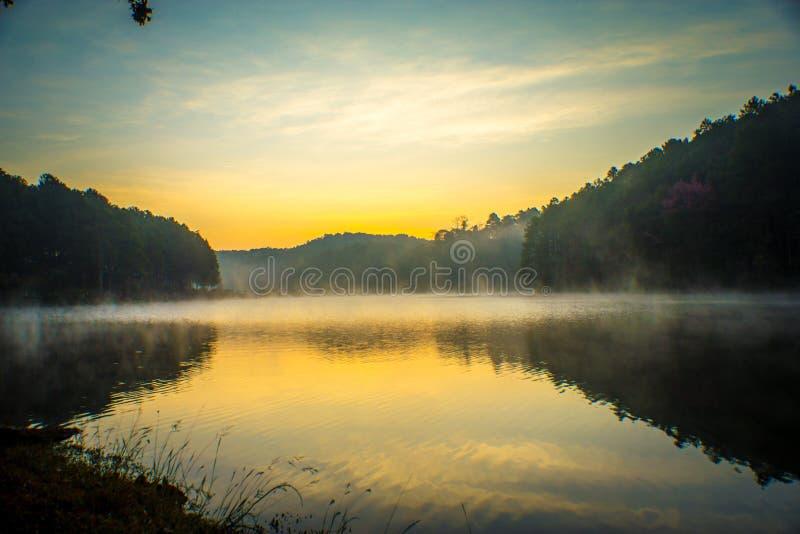 Salida del sol en Pangung, pino Forest Park, Mae Hong Son, al norte del Th imágenes de archivo libres de regalías