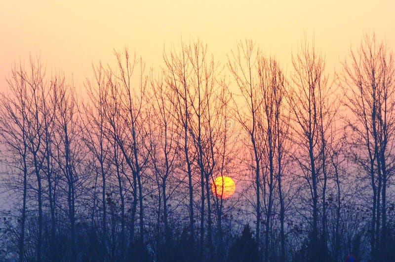 Salida del sol en Pekín fotografía de archivo