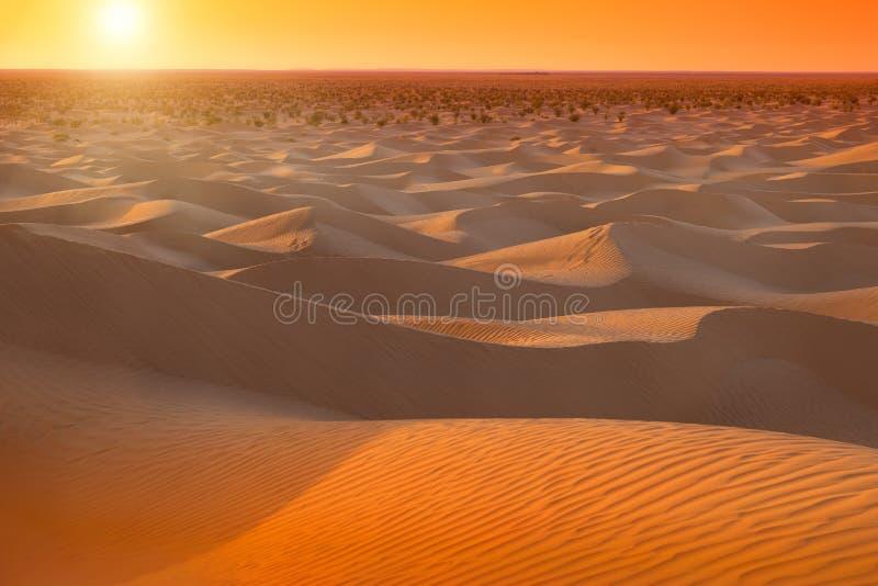 Salida del sol en Sáhara en Túnez fotografía de archivo