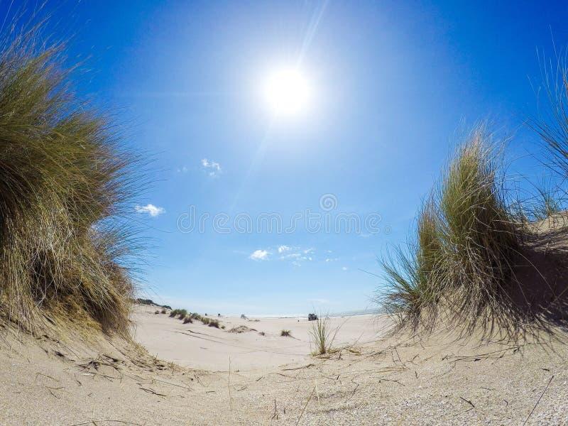 Salida del sol en una duna de arena fotos de archivo