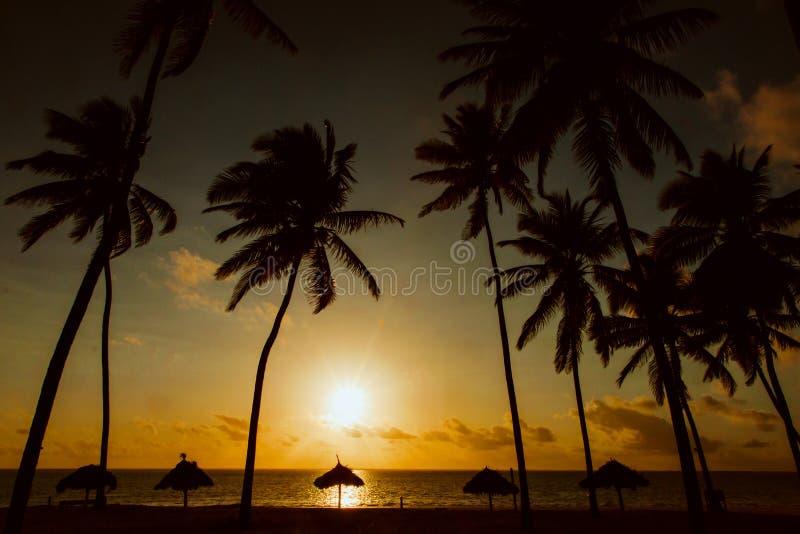 Salida del sol en una playa africana del océano imagen de archivo libre de regalías