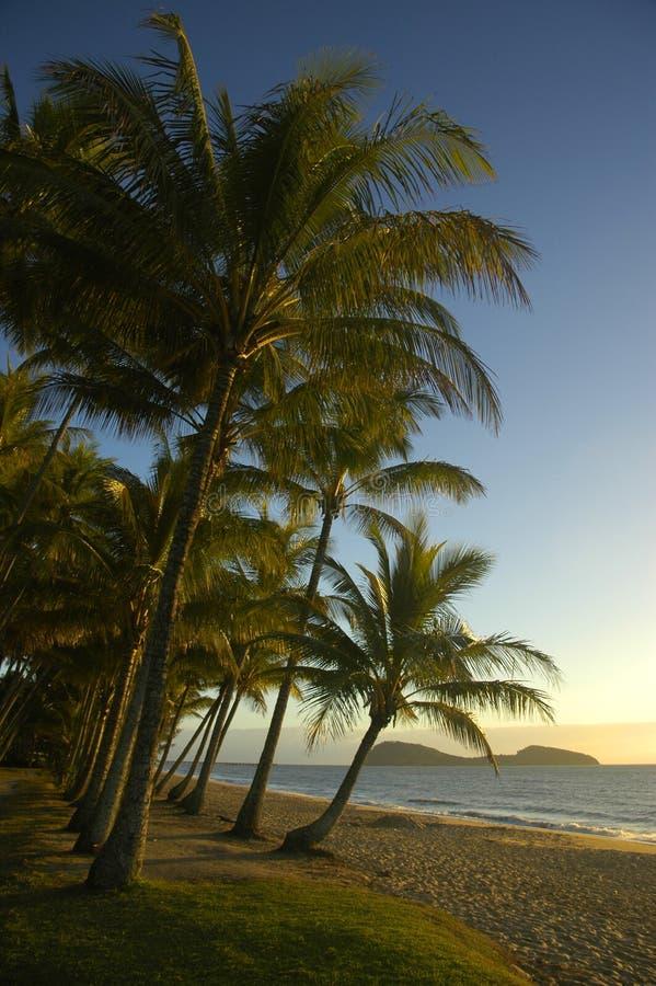 Salida del sol en una playa tropical fotos de archivo