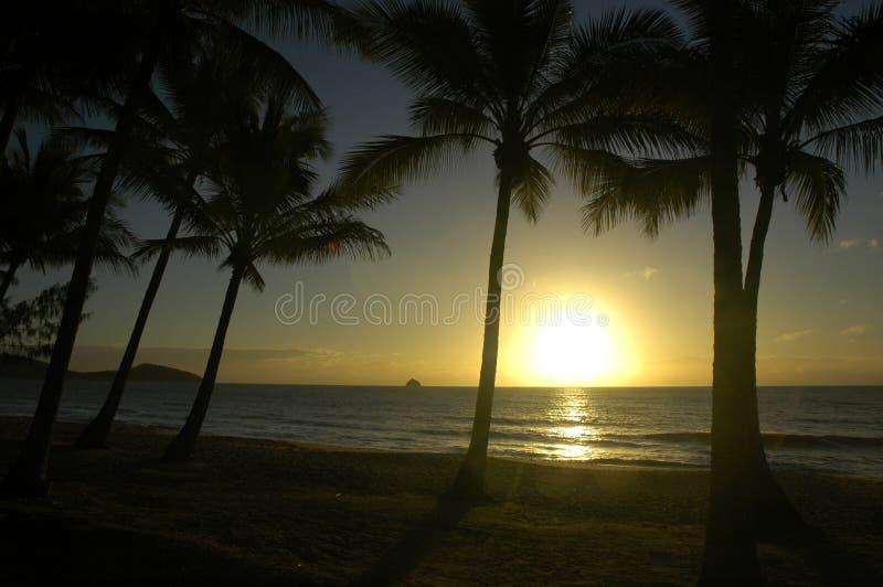 Salida del sol en una playa tropical imagenes de archivo