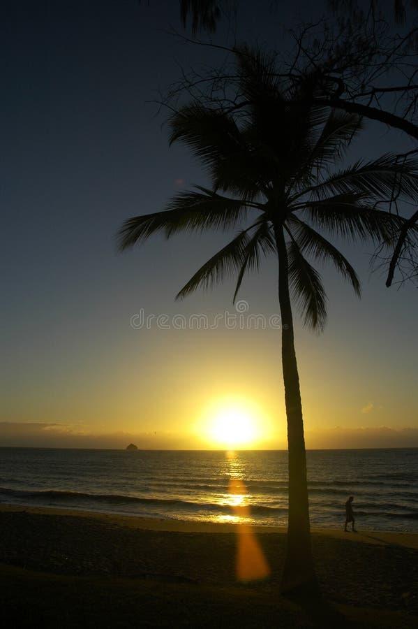Salida del sol en una playa tropical imágenes de archivo libres de regalías