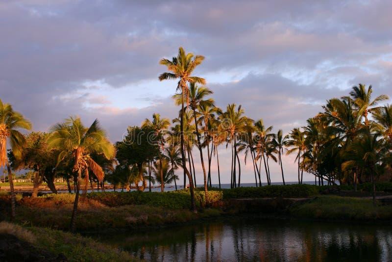 Salida del sol hawaiana fotografía de archivo