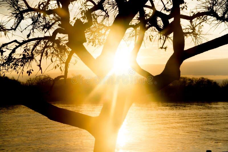 Salida del sol hermosa en la costa del río de Lujan en San Fernando, Buenos Aires fotografía de archivo libre de regalías