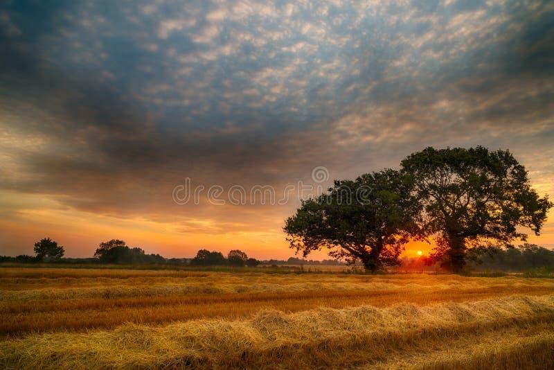 Salida del sol inglesa del verano foto de archivo libre de regalías