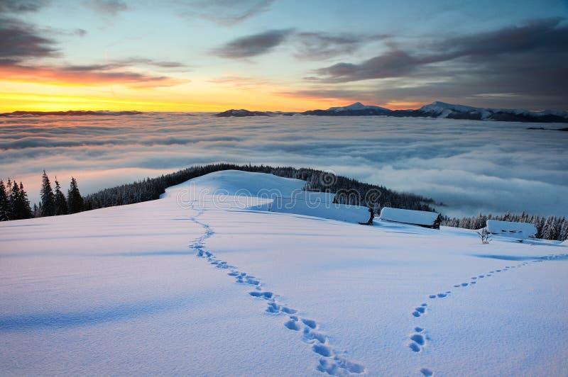 Salida del sol nublada en montañas cárpatas del invierno fotografía de archivo