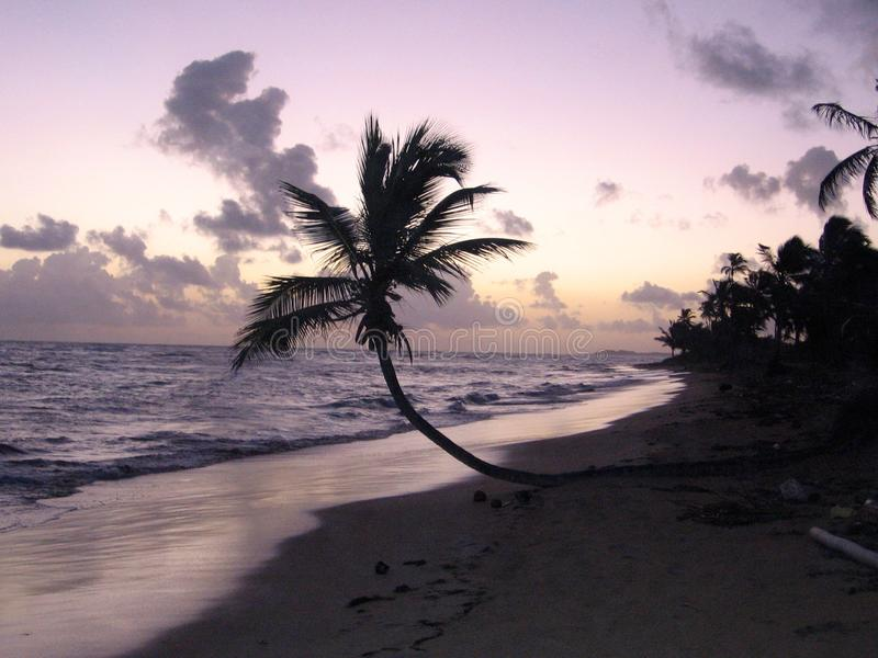 Salida del sol púrpura fotos de archivo