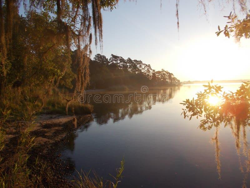 Salida del sol del pantano fotografía de archivo libre de regalías