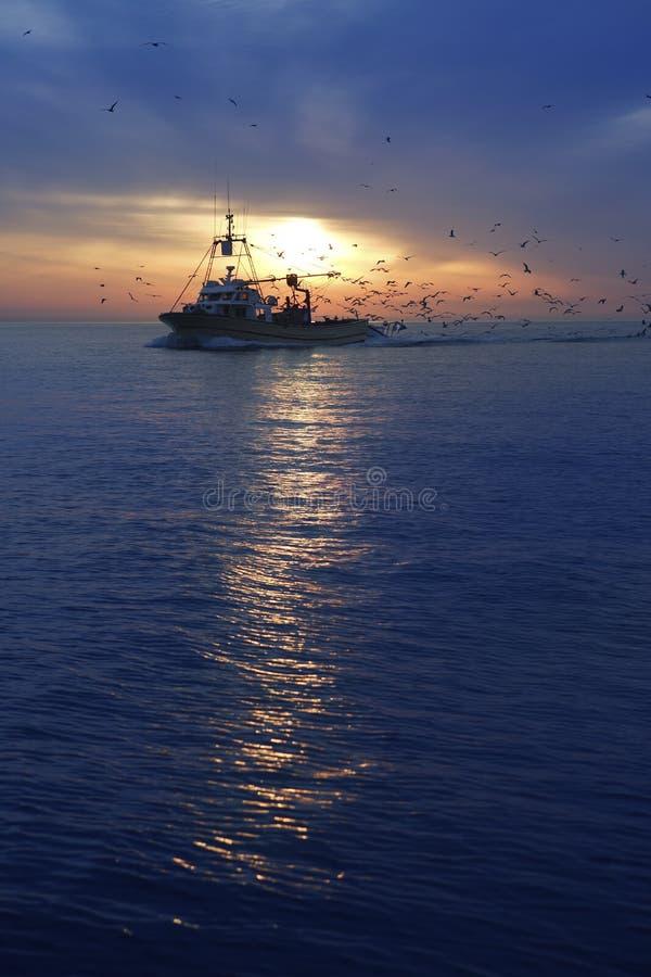 Salida del sol profesional de la puesta del sol de la gaviota del barco de pesca foto de archivo libre de regalías