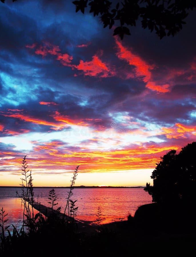 Salida del sol sobre el puerto NZ de Tauranga imagen de archivo libre de regalías