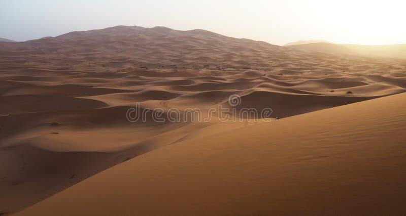 Salida del sol sobre las dunas de arena del desierto del Sáhara en Marruecos foto de archivo libre de regalías
