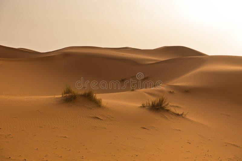 Salida del sol sobre las dunas de arena en el ergio Chebbi, desierto del Sáhara, Marruecos fotografía de archivo