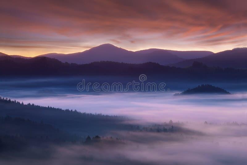 Salida del sol sobre Misty Landscape Vista esc?nica del cielo de niebla de la ma?ana con el sol naciente sobre Misty Forest imagenes de archivo