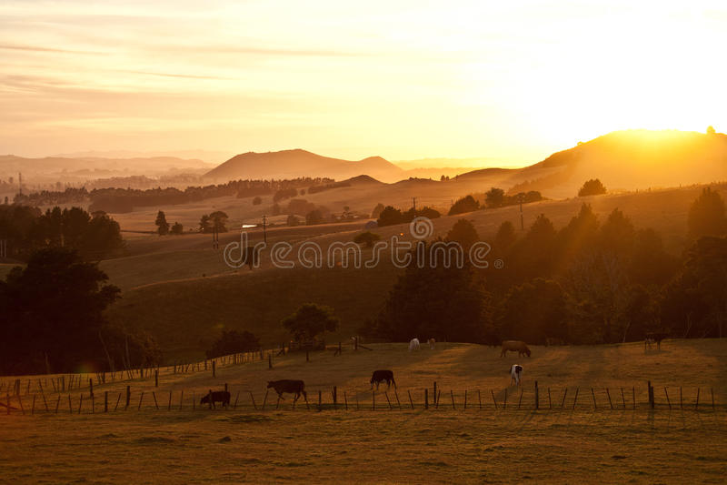 Salida del sol sobre tierras de labrantío pastorales fotos de archivo