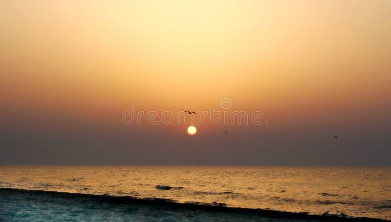 Download Salida del sol sola imagen de archivo. Imagen de vacío - 1293123