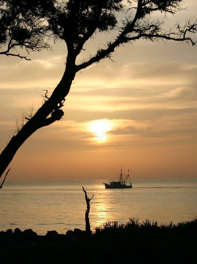 Salida del sol y camarón foto de archivo libre de regalías