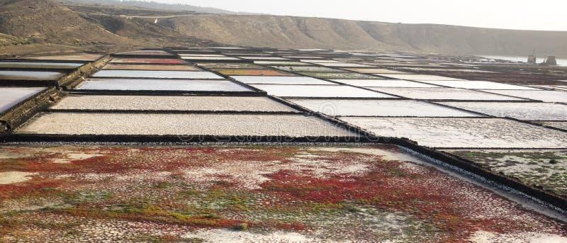 Salinas de Janubio p? kusten av Lanzarote i kanarief?gel?arna Salt extraktion av havet royaltyfria bilder