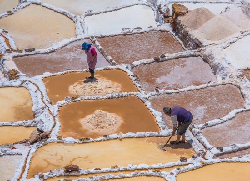 SALINAS DE MARAS, PERÙ: Lavoratori che estraggono sale a Salinas de Maras, miniere di sale artificiali vicino a Cusco, Perù immagini stock