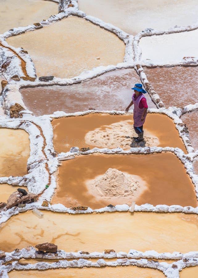 SALINAS DE MARAS, PERÙ - 12 OTTOBRE 2015: Lavoratori che estraggono sa fotografie stock