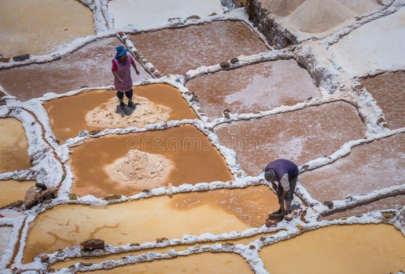 SALINAS DE MARAS, PERÙ - 12 OTTOBRE 2015: Lavoratori che estraggono sa fotografia stock libera da diritti