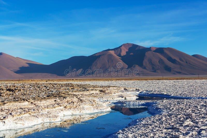 Salinas i Argentina royaltyfria foton
