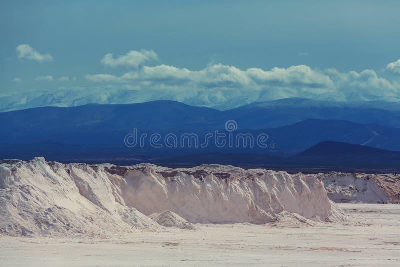 Salinas i Argentina arkivfoto