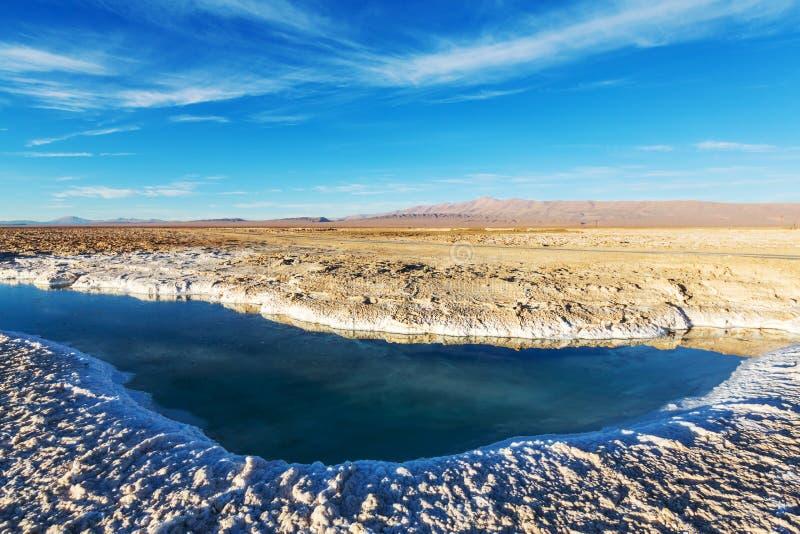 Saline in Argentina fotografie stock libere da diritti
