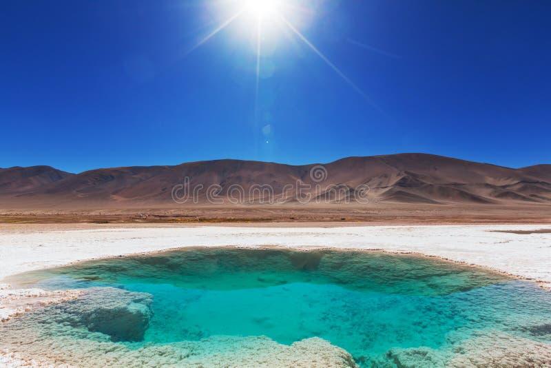 Saline in Argentina fotografie stock