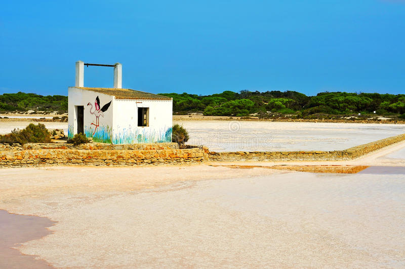 Salines自然公园在Formentera 库存照片