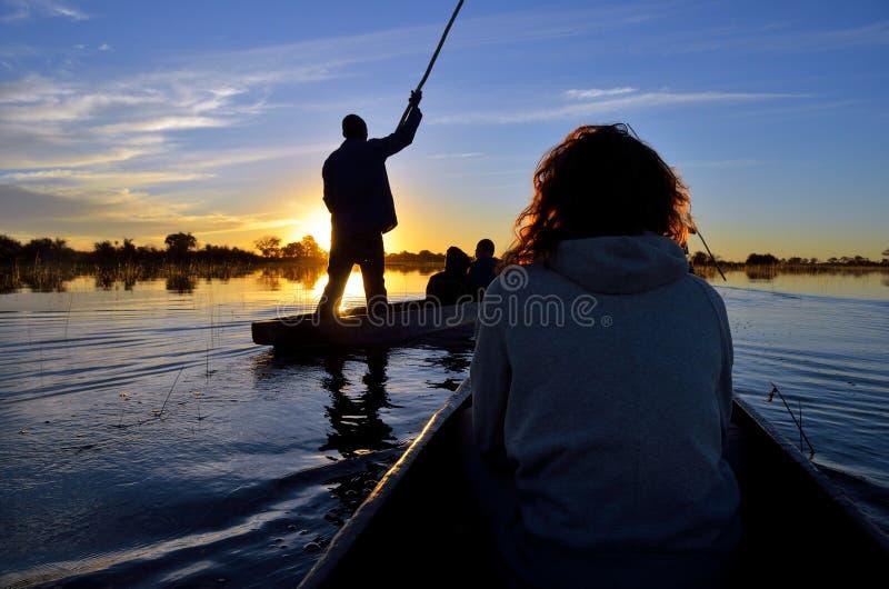Saling en el delta de Okavango en la puesta del sol, Botswana foto de archivo libre de regalías