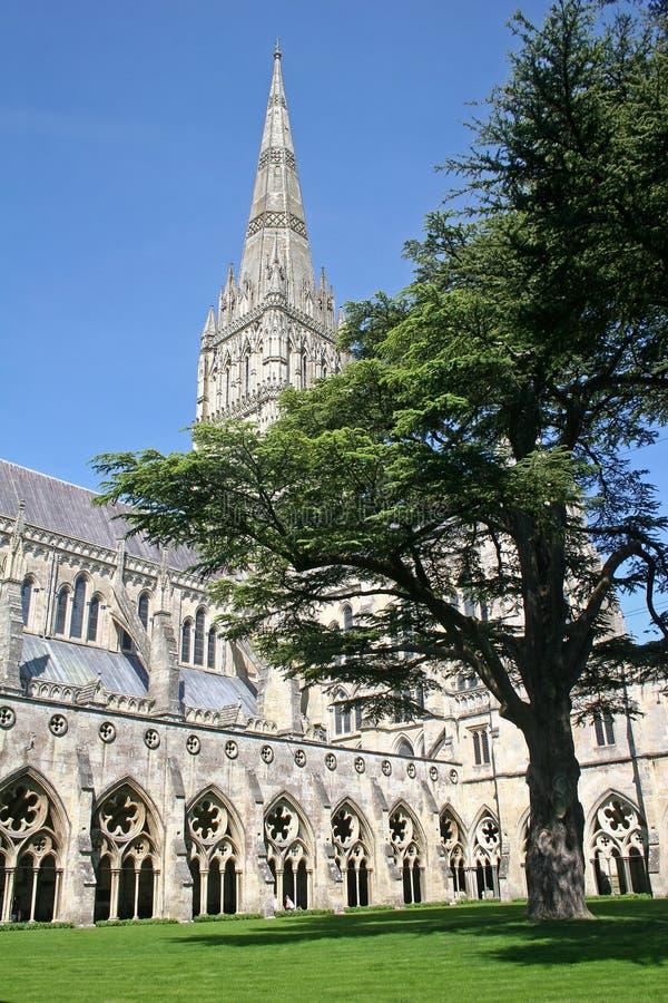 Salisbury cathedral stock photo