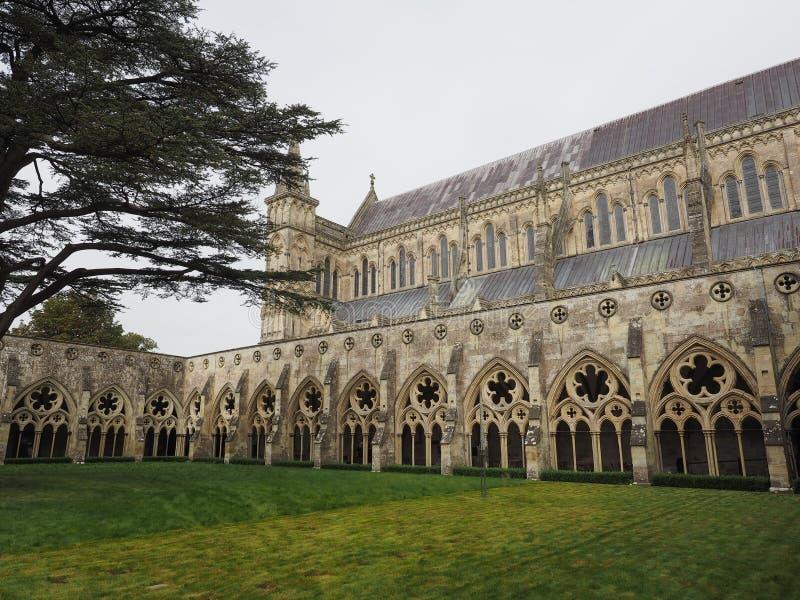 Salisbury Cathedral in Salisbury royalty free stock photo