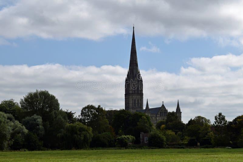 Salisbury domkyrka från vattenängar, Wiltshire, England royaltyfria foton