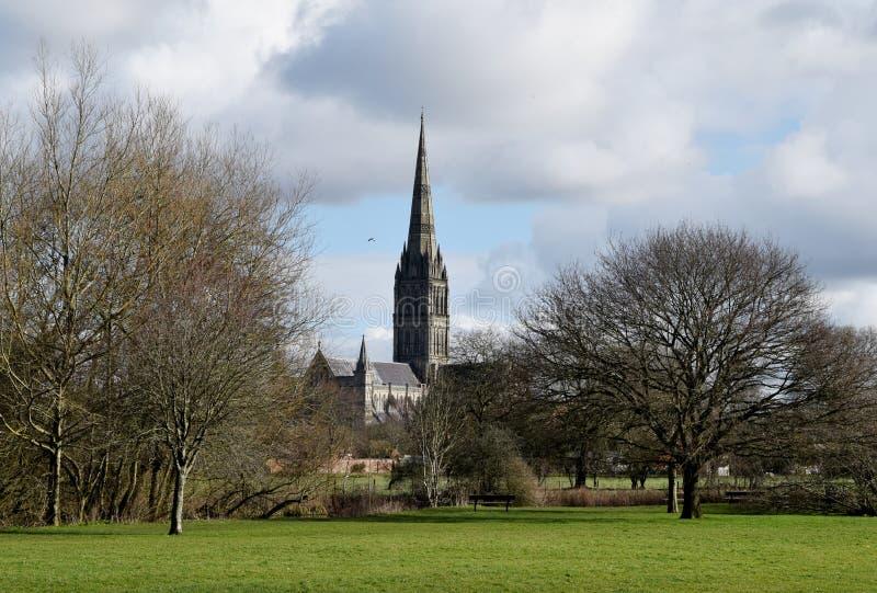 Salisbury domkyrka från vattenängar, Wiltshire, England royaltyfri bild