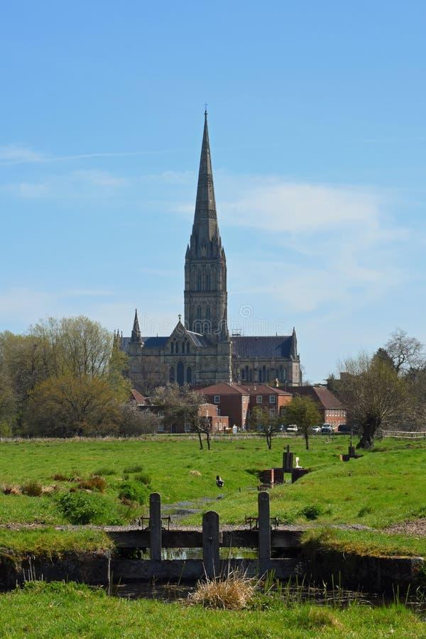 Salisbury domkyrka från vattenängar, Wiltshire, England arkivfoto
