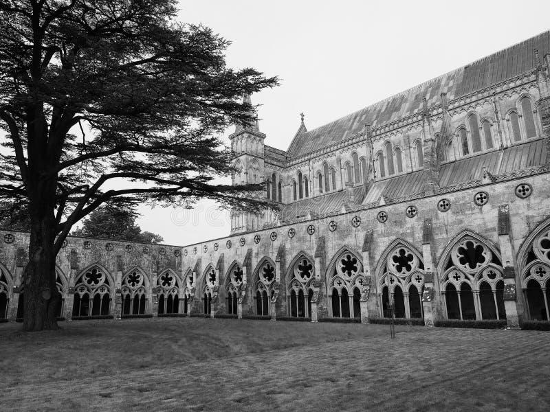 Salisbury domkyrka i Salisbury i svartvitt royaltyfria bilder