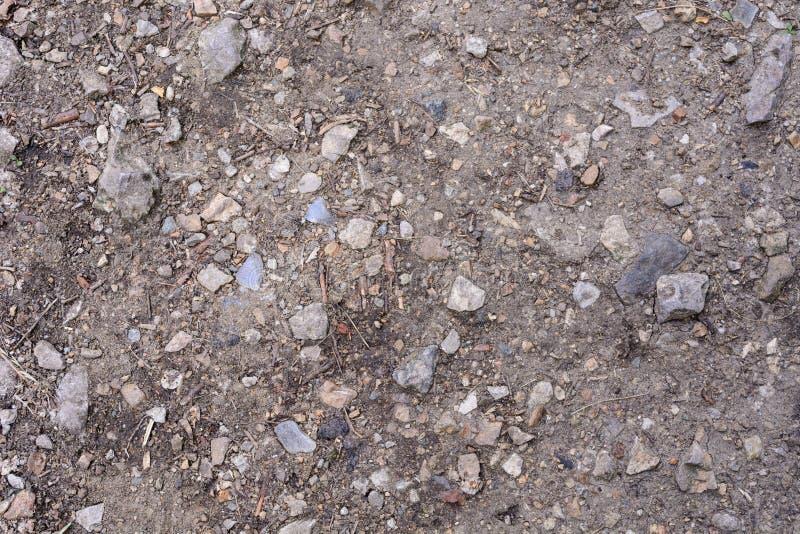 Salissez la texture, texture au sol grise de sol mélangée à de petites roches Russie images libres de droits