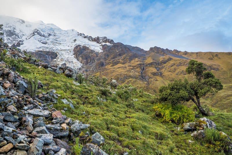 Salkantay som Trekking Peru royaltyfria bilder
