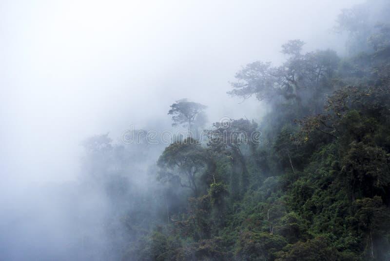 Salkantay Trekking Перу стоковые изображения rf
