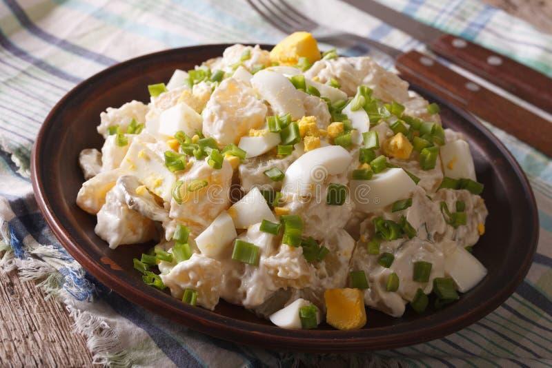 Sallad av potatisar, ägg, salladslökar och majonnäscloseupen Ho arkivfoto